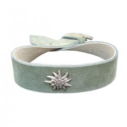 Hundehalsband grün Edelweiß