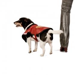 Hunde-Cape Herz